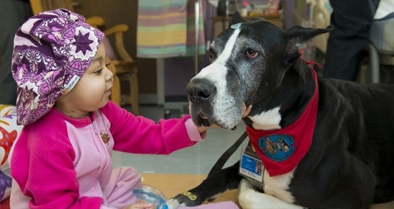 Pet therapists regularly visit with children.