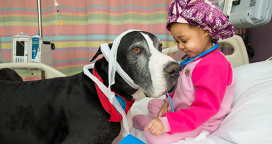 A patient enjoys a visit from a pet therapy dog, one of the amenities available at our children's hospital