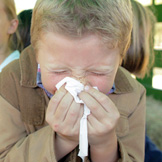 Pediatric allergy symptoms include sneezing